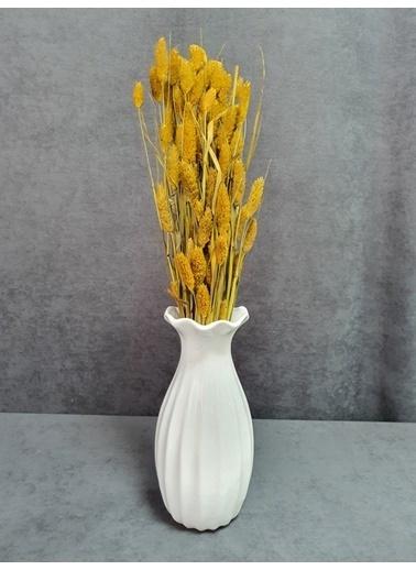 Kuru Çiçek Deposu Kuru Çiçek Kuş Otu Yapraklı 55-60 Cm Yeşil Sarı